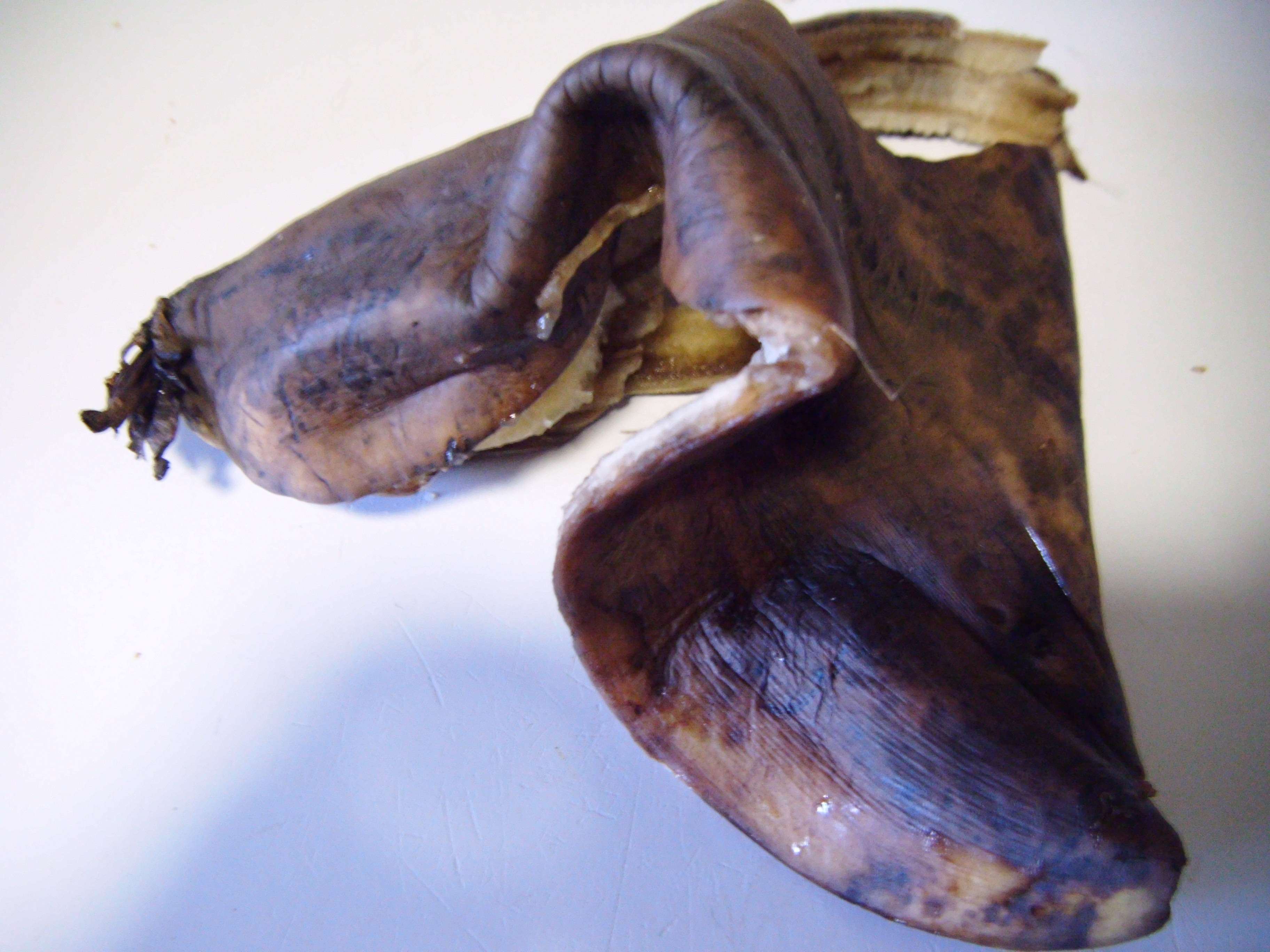 Rotten Banana Peels Something For Almost Nothing