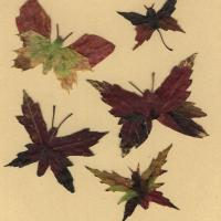 Butterflies Made from Leaves