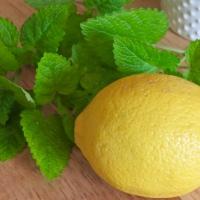 From the Herb Garden: Lemon Balm Tea Bread
